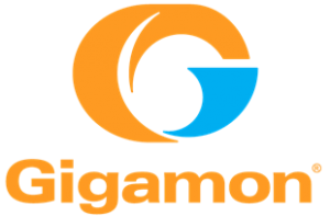 Gigamon provides a network visibility and traffic monitoring technology